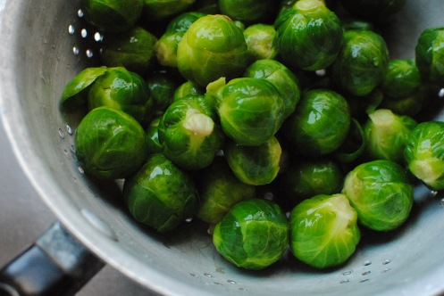 steamed sprouts