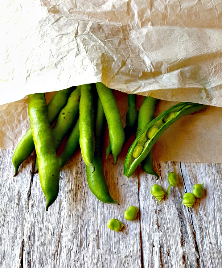 broad/fava beans // food to glow