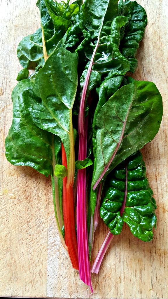 rainbow chard // food to glow